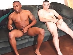 Two bonny studs levy on transmitted to couch with the addition of stroke their cocks
